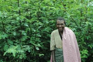 Kahangi Tree Lady, Kibale, Uganda