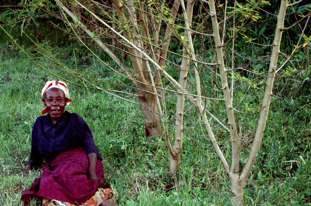 lady and sesbania, sebitoli, Kibale, Uganda